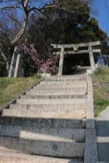 Ogijima 02-2019 - 29
