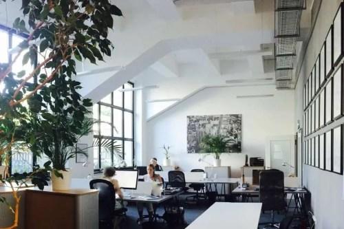 b+ office