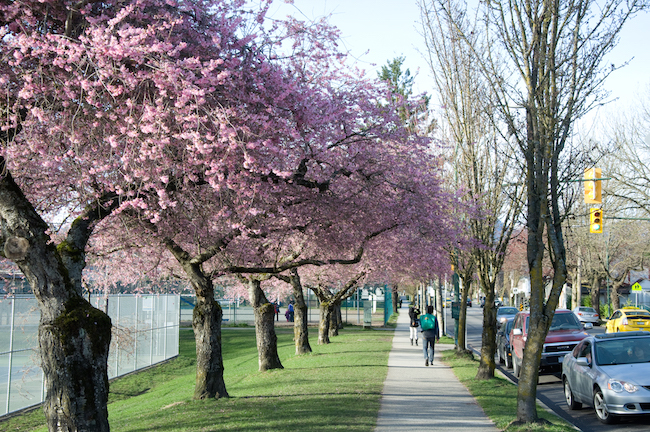 neighbourhoods for families in Vancouver