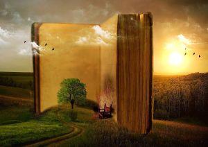 libro propósito de vida