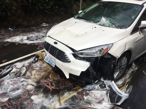 """Así quedó la carretera tras accidente de camión con """"criaturas viscosas"""""""