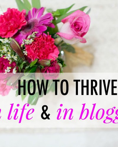 How to Thrive in Life & Blogging
