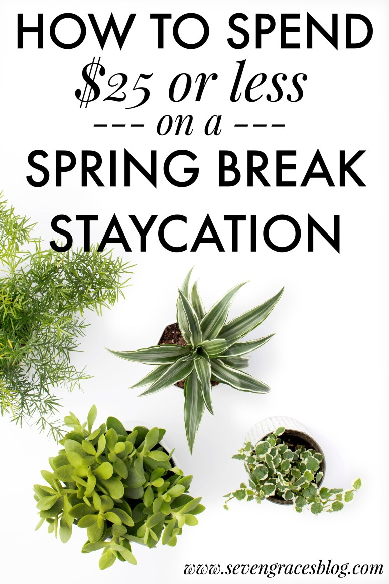 5 Ways to Have an Awesome Spring Break Staycation for $25 or Less. Great tips to have a fun staycation with your family while not breaking the bank. Inexpensive ways to have fun on Spring Break.