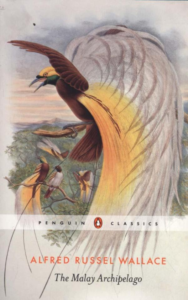 The Malay Archipelago by Wallace Alfred Russel