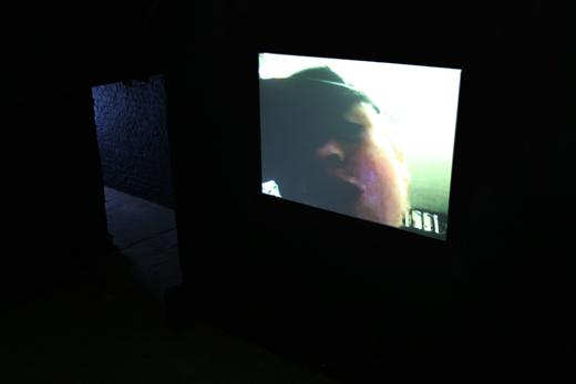 Oliver Laric Installation 5050 2008