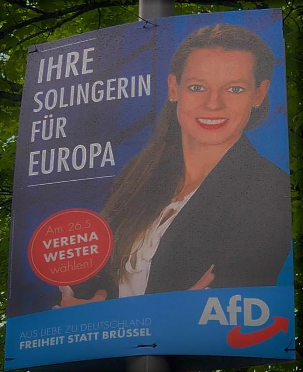 Afd Wahlplakate