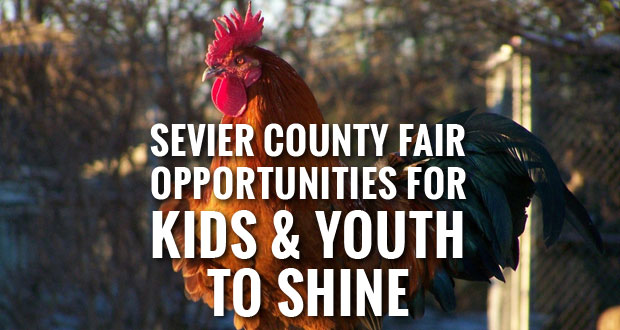 UT Extension promotes youth entries into Sevier County Fair