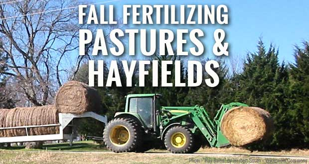 Fall Fertilization of Pastures and Hayfields