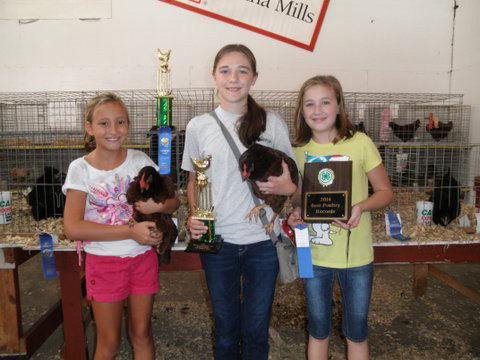 2014 4-H Chick Chain Winners
