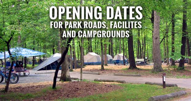 Great Smoky Mountains National Park Announces Spring Opening Schedule for Campgrounds