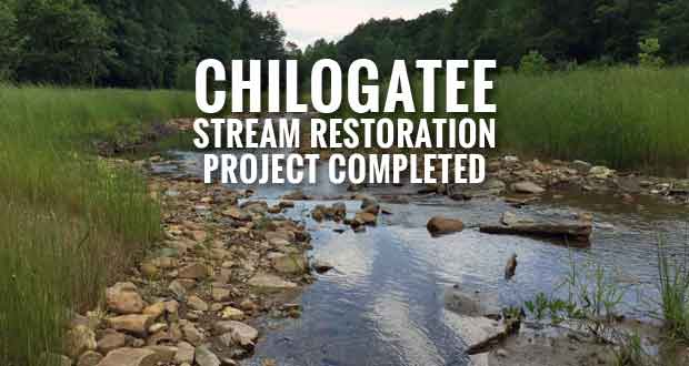 Chilogatee Stream Restoration Project in Great Smoky Mountains Park Complete