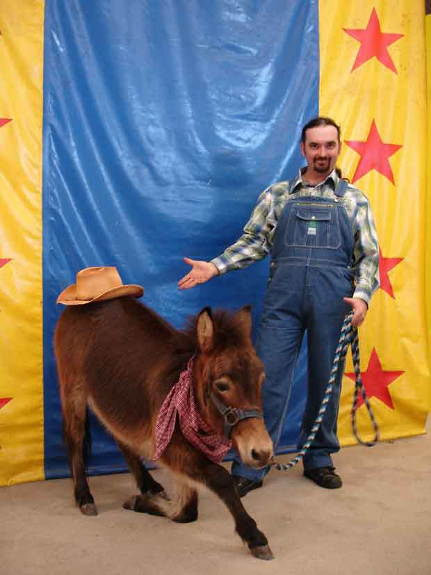 Tony King and Charlie the communicating mini-donkey in the Comedy Critters Pet Show at The Comedy Barn in Pigeon Forge.
