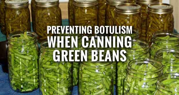 Pressure Canning the Only Safe Way to Can Green Beans