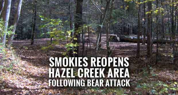Hazel Creek Backcountry Area Reopens after Bear Attack
