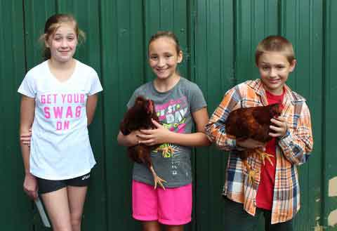 2015 Sevier County 4-H Poultry Show