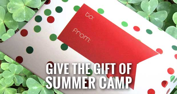 4-H Camp the Ideal Christmas Gift for 4-H Kids