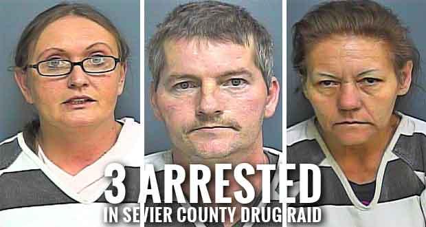Sevier County Street Crimes Unit makes Narcotics Arrests
