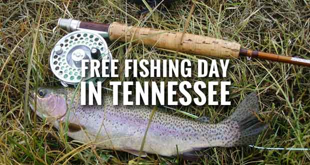 Free Fishing Day in Tennessee for Residents and Visitors