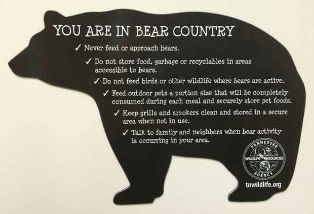 New Bear Management Task Force to Focus on Education, Garbage Containers