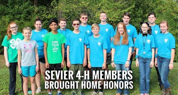Sevier Kids Compete in 4-H Forestry and Meats Judging