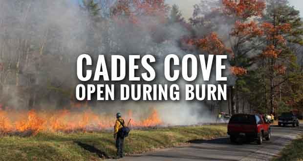 Park Plans 420-Acre Prescribed Burn in Cades Cove