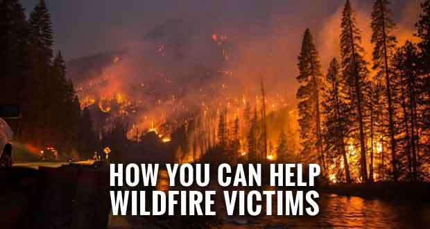 Wildfire Relief Donations to Help First Responders and Evacuees