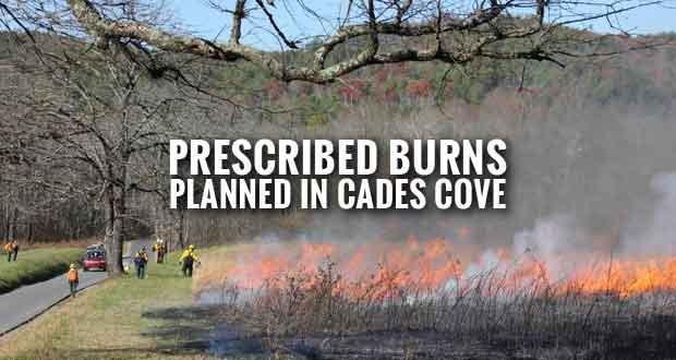Smokies Plans Prescribed Burns to Restore Cades Cove Meadow Habitats
