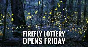 Elkmont Synchronous Firefly Viewing Dates Set