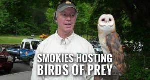 Balsam Mountain Trust to Give Birds of Prey Program at Oconaluftee