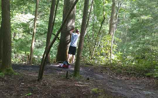 Vandalism in Great Smoky Mountains National Park