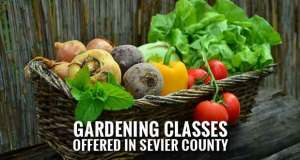 Register Now for 2018 Spring Gardening Classes