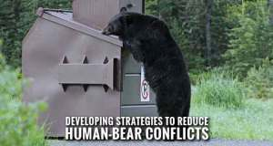 International Human-Bear Conflicts Workshop Coming to Gatlinburg