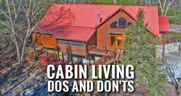 for adlers reviews pigeon bedroom sale adler rental guest property tennessee forge cabins ridge s picture cabin usa