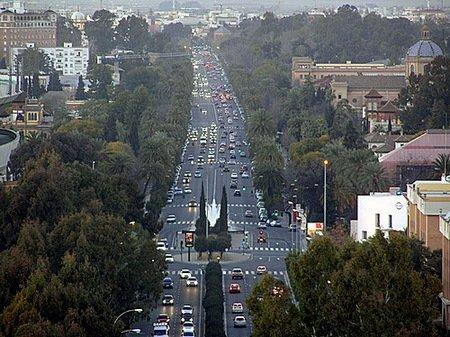 La avenida de La Palmera es una de las más transitadas de Sevilla/ Sevilla21