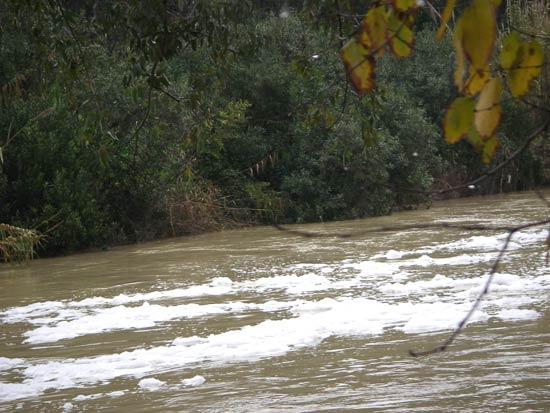 Son más de tres los vertidos que se han producido al río Guadaíra en lo que llevamos de año/Sevilla Actualidad