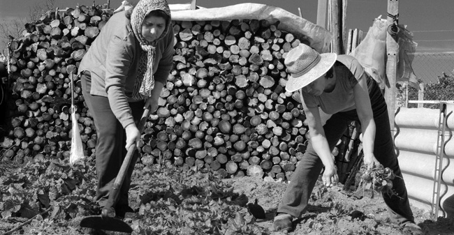 'La tierra y el trabajo', fotografía premiada/SA