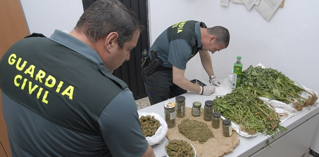 guardia-civil-plantacion-droga-puebla-020612