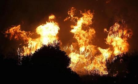 El fuego ha afectado a 6 municipios de la provincia de Málaga./Agencias
