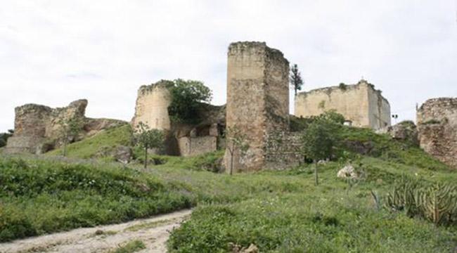 castillo-moron-2