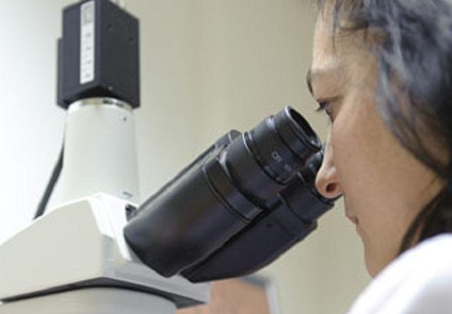 laboratorio-investigacion