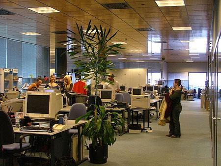 oficina-rube-lozano
