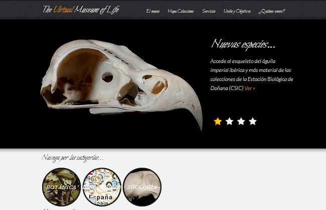 museo-virtual-hispalense