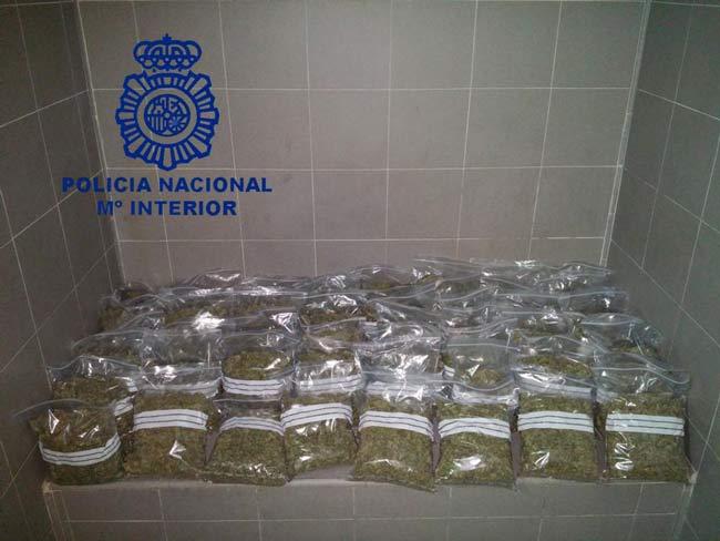 Marihuana-Dos-Hermanas-2