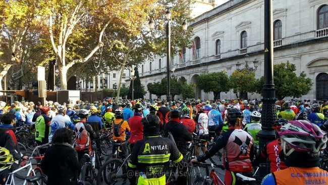 homenaje ciclista fallecido 3