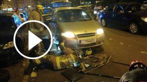 rescate-perro-coche
