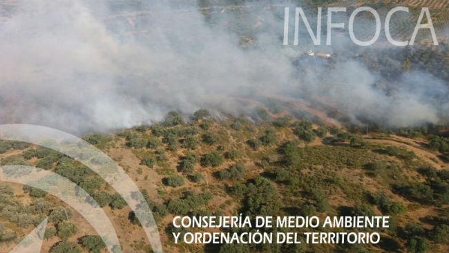 incendio el garrobo junio17