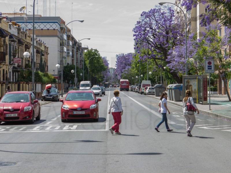 Avenida Ramón y Cajal
