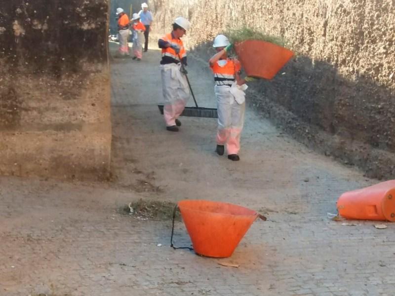 Actuación de Lipasam en la muralla de la Macarena /Ayto. Sevilla
