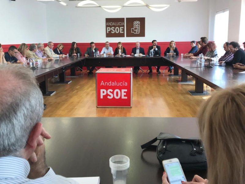 Ejecutiva Provincial socialista / PSOE
