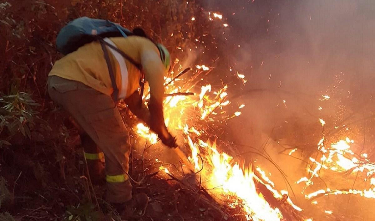 Incendio, imagen de archivo / Infoca